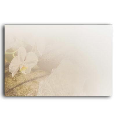 Carte de remerciements Orchidées